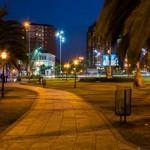 AVANZADO- MENCIÒN JURADO- GUSTAVO PEREZ-Tigre  iluminada