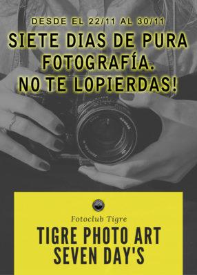 TIGRE PHOTO ART SEVEN DAYS