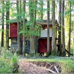 Menciones del Jurado   La Casa y los árboles PULZONI SONIA BEATRIZ