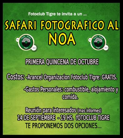SAFARI FOTOGRAFICO NOA AGOSTO2015